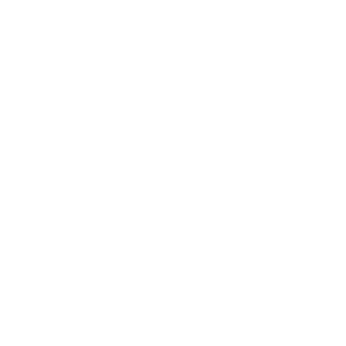 selo AS9100