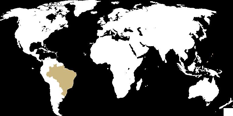 Mapa do mundo com brasil destacado